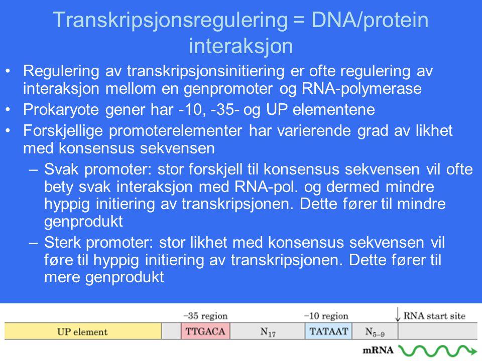 Transkripsjonsregulering = DNA/protein interaksjon Regulering av transkripsjonsinitiering er ofte regulering av interaksjon mellom en genpromoter og R