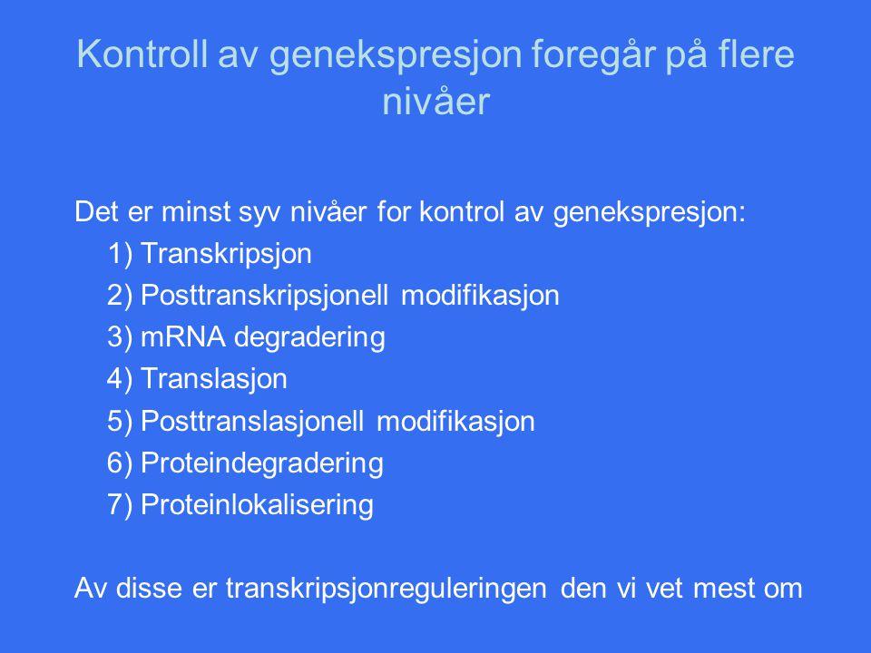 Kontroll av genekspresjon foregår på flere nivåer Det er minst syv nivåer for kontrol av genekspresjon: 1) Transkripsjon 2) Posttranskripsjonell modif