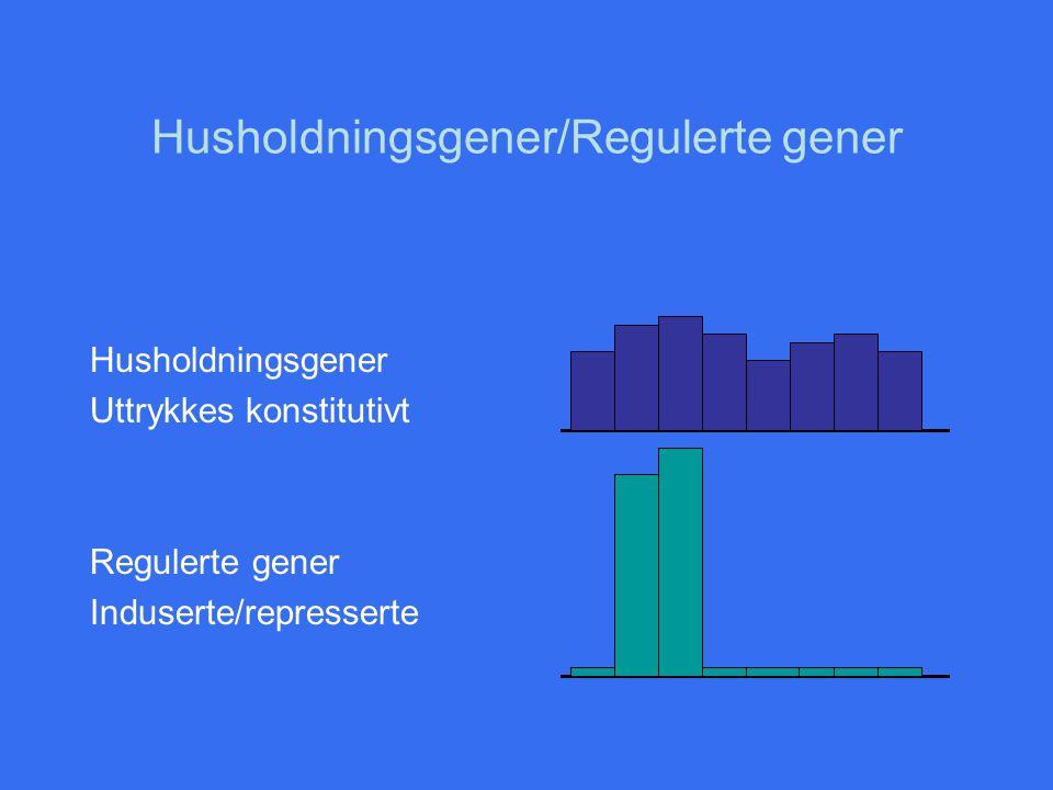 Transkripsjonsregulering = DNA/protein interaksjon Regulering av transkripsjonsinitiering er ofte regulering av interaksjon mellom en genpromoter og RNA-polymerase Prokaryote gener har -10, -35- og UP elementene Forskjellige promoterelementer har varierende grad av likhet med konsensus sekvensen –Svak promoter: stor forskjell til konsensus sekvensen vil ofte bety svak interaksjon med RNA-pol.