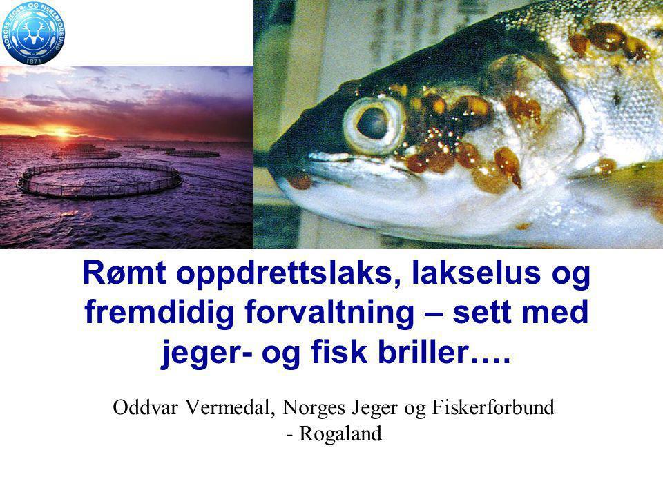 Rømt oppdrettslaks, lakselus og fremdidig forvaltning – sett med jeger- og fisk briller…. Oddvar Vermedal, Norges Jeger og Fiskerforbund - Rogaland