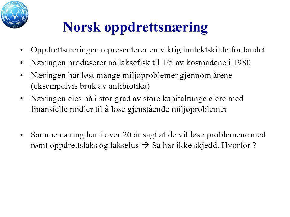 Norsk oppdrettsnæring Oppdrettsnæringen representerer en viktig inntektskilde for landet Næringen produserer nå laksefisk til 1/5 av kostnadene i 1980