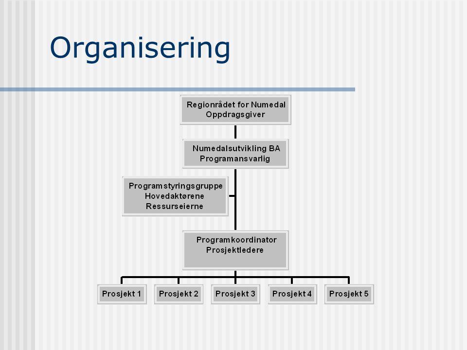 Nettverkssamhandling - IKT Evnen til å løse oppgaver gjennom samhandling i nettverk regnes for å være en avgjørende suksessfaktor i informasjons- og k