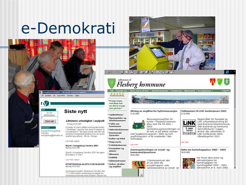 Teledemokrati (e-Demokrati) Kunnskap og kompetanseutvikling (e-Læring) Interkommunal samhandling Elektronisk forretningsutvikling Lokalt kommunikasjon