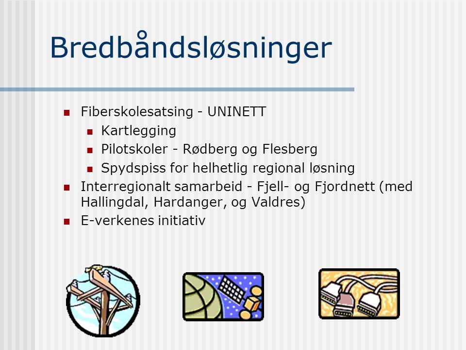 e-Business E-LiNKforum Samarbeid med eforum.no, Samarbeid med BI og Bedriftsuniversitetet