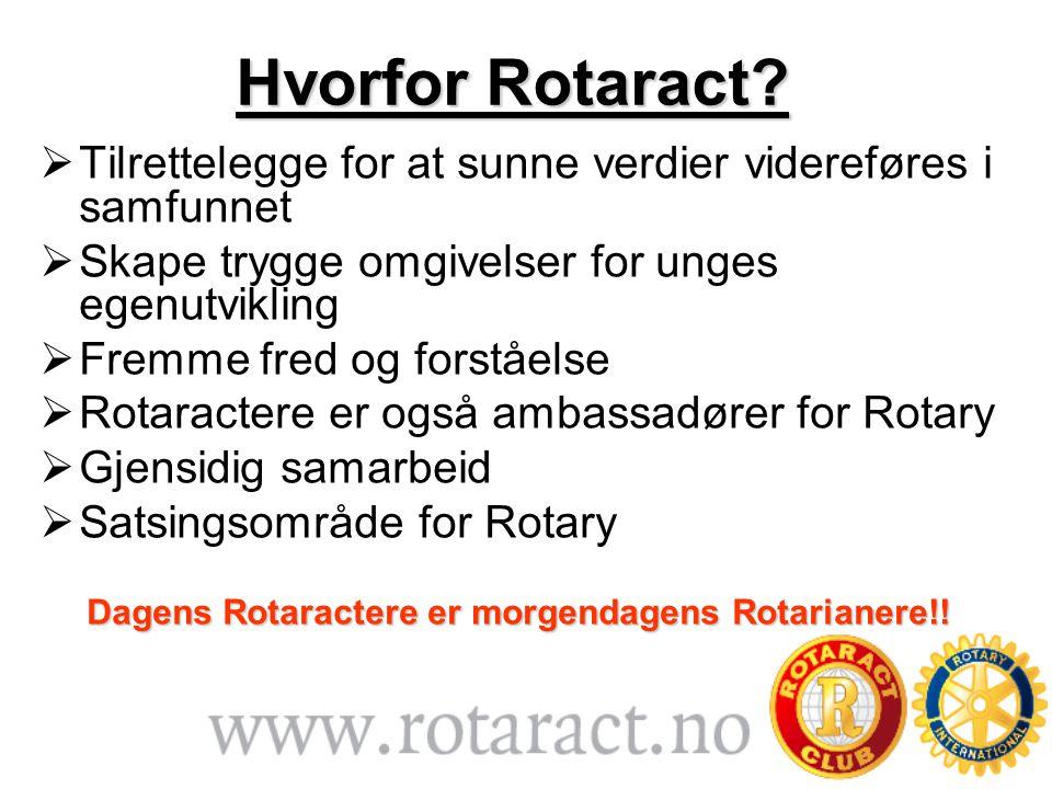 Hvorfor Rotaract.