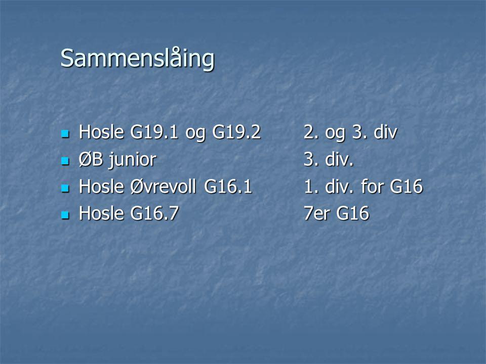 Sammenslåing Hosle G19.1 og G19.22. og 3. div Hosle G19.1 og G19.22.