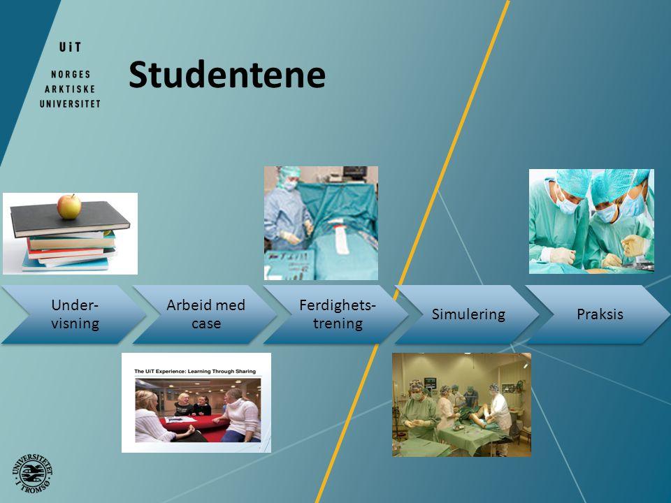 Studentene Under- visning Arbeid med case Ferdighets- trening SimuleringPraksis