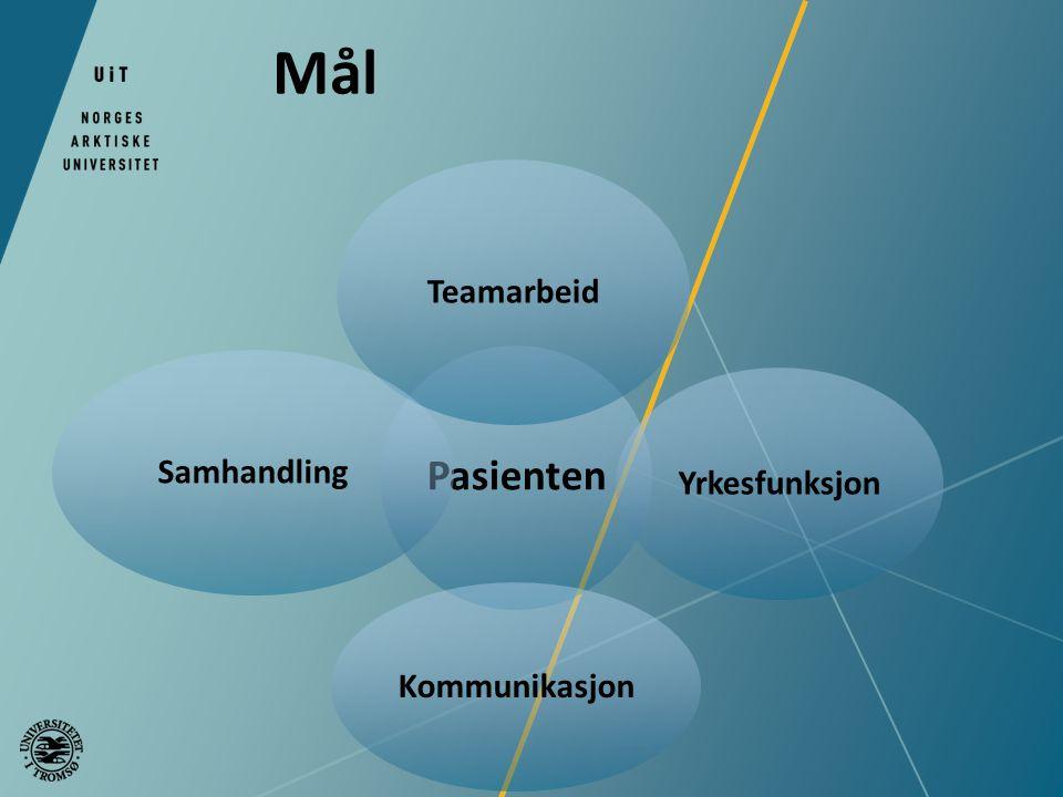 Pasienten Teamarbeid Yrkesfunksjon Kommunikasjon Samhandling Mål