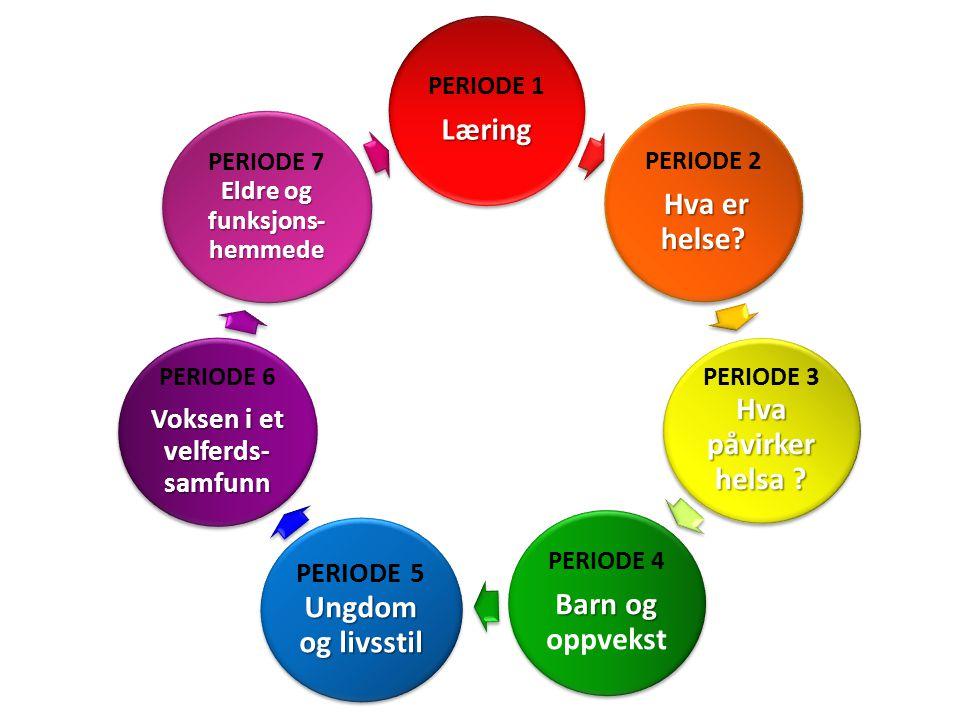 PERIODE 1Læring PERIODE 2 Hva er helse? Hva påvirker helsa ? PERIODE 3 Hva påvirker helsa ? PERIODE 4 Barn og Barn og oppvekst Ungdom og livsstil PERI
