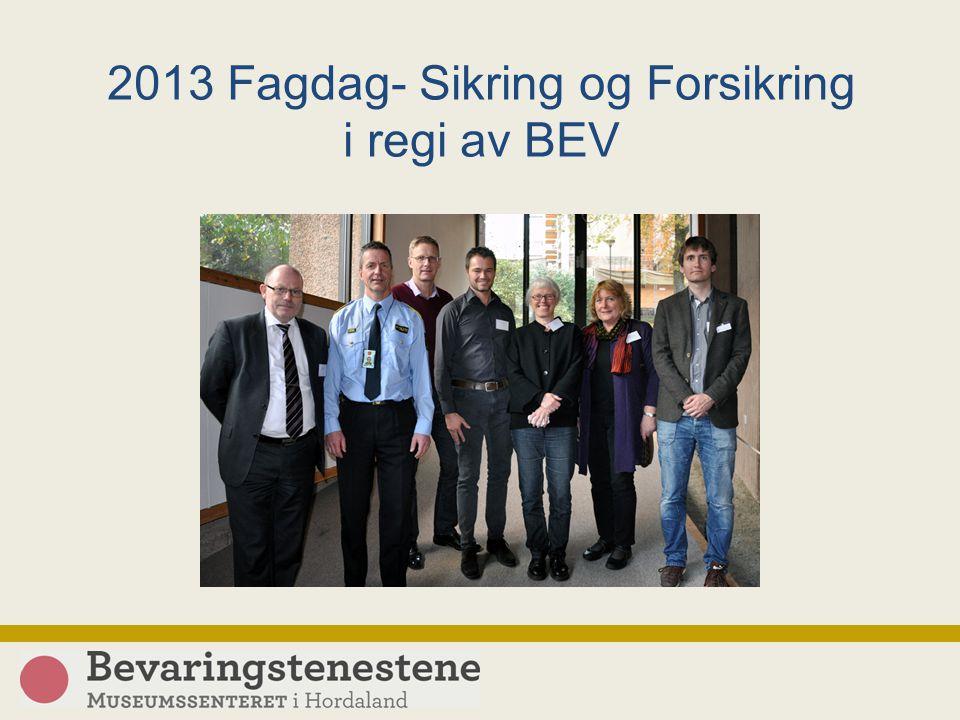 2013 Fagdag- Sikring og Forsikring i regi av BEV Foto