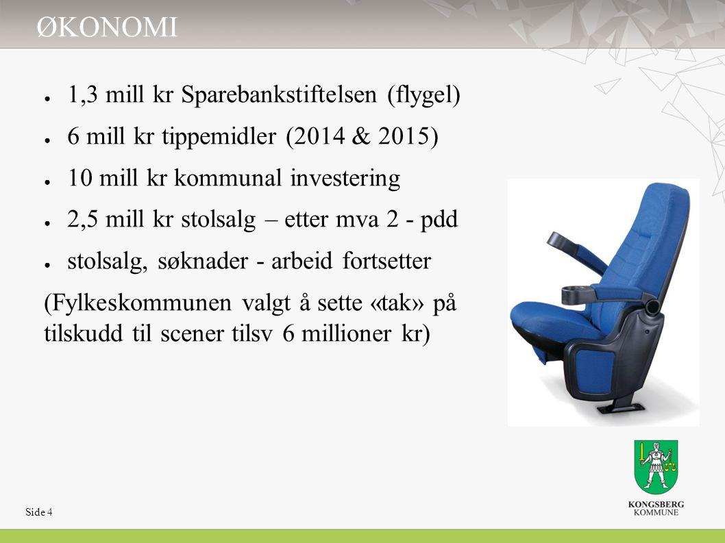 ØKONOMI ● 1,3 mill kr Sparebankstiftelsen (flygel) ● 6 mill kr tippemidler (2014 & 2015) ● 10 mill kr kommunal investering ● 2,5 mill kr stolsalg – et