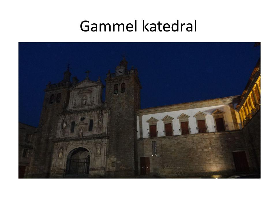 Gammel katedral