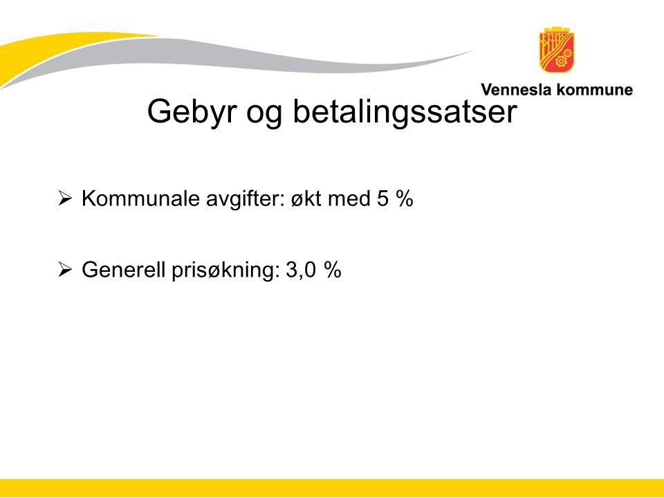 Gebyr og betalingssatser  Kommunale avgifter: økt med 5 %  Generell prisøkning: 3,0 %