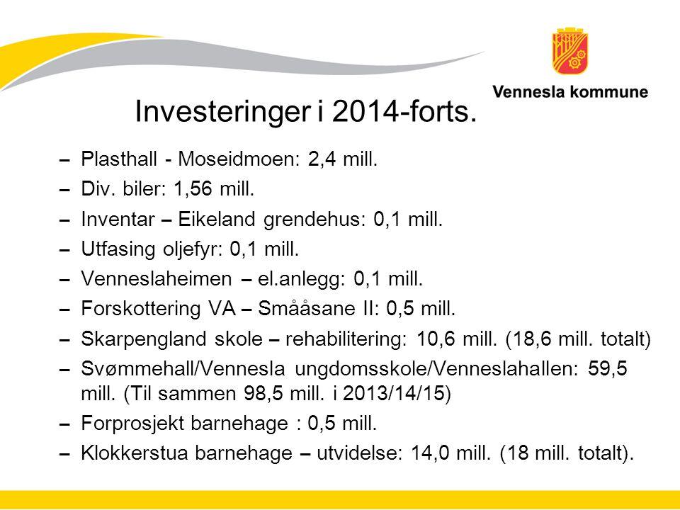 Investeringer i 2014-forts. –Plasthall - Moseidmoen: 2,4 mill. –Div. biler: 1,56 mill. –Inventar – Eikeland grendehus: 0,1 mill. –Utfasing oljefyr: 0,