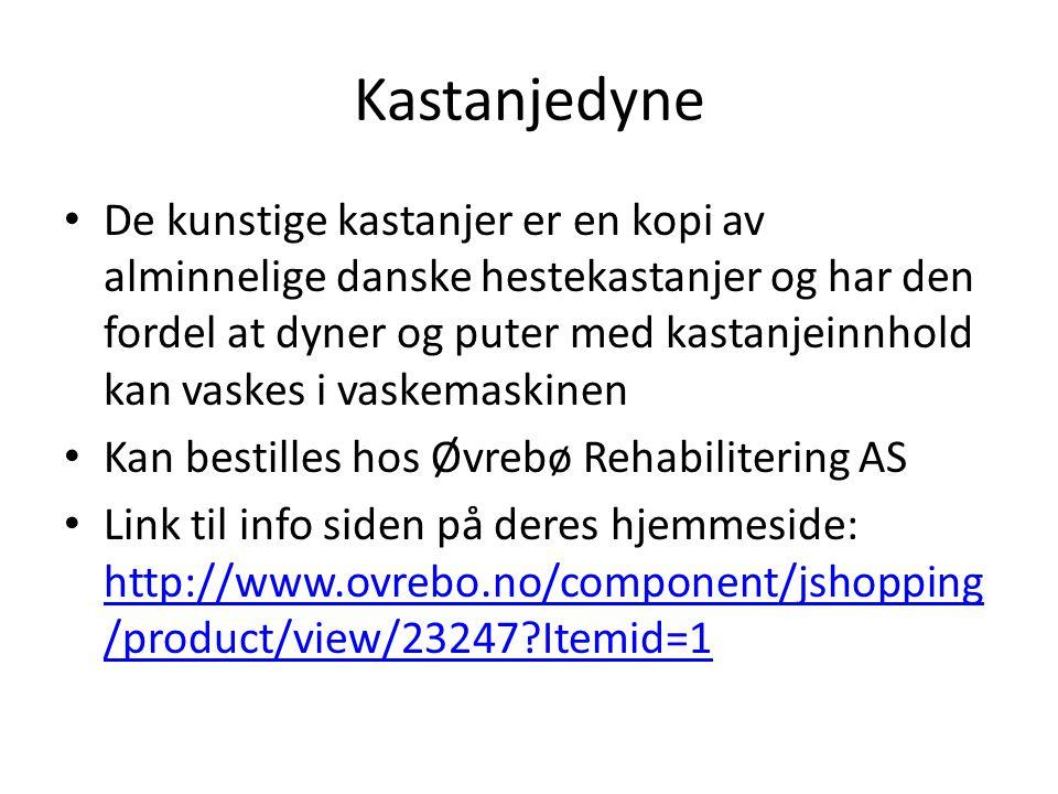 Kastanjedyne De kunstige kastanjer er en kopi av alminnelige danske hestekastanjer og har den fordel at dyner og puter med kastanjeinnhold kan vaskes