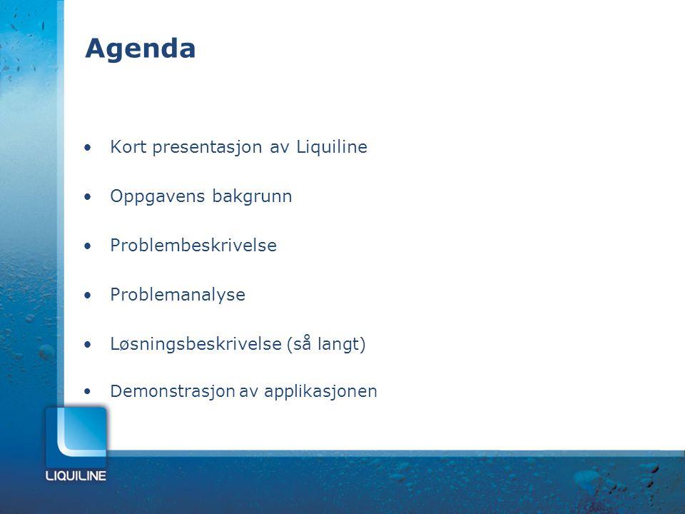 Agenda Kort presentasjon av Liquiline Oppgavens bakgrunn Problembeskrivelse Problemanalyse Løsningsbeskrivelse (så langt) Demonstrasjon av applikasjon
