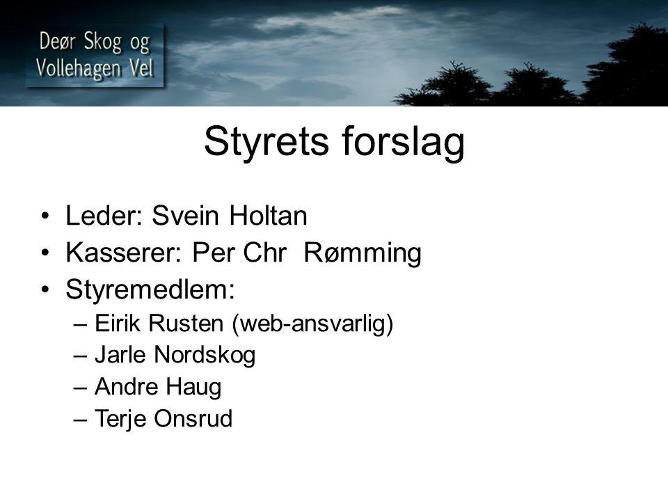 Styrets forslag Leder: Svein Holtan Kasserer: Per Chr Rømming Styremedlem: –Eirik Rusten (web-ansvarlig) –Jarle Nordskog –Andre Haug –Terje Onsrud