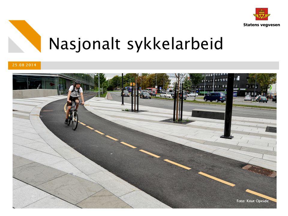 Nasjonalt sykkelarbeid 25.08 2014 Foto: Knut Opeide