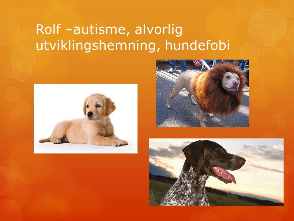 Rolf –autisme, alvorlig utviklingshemning, hundefobi