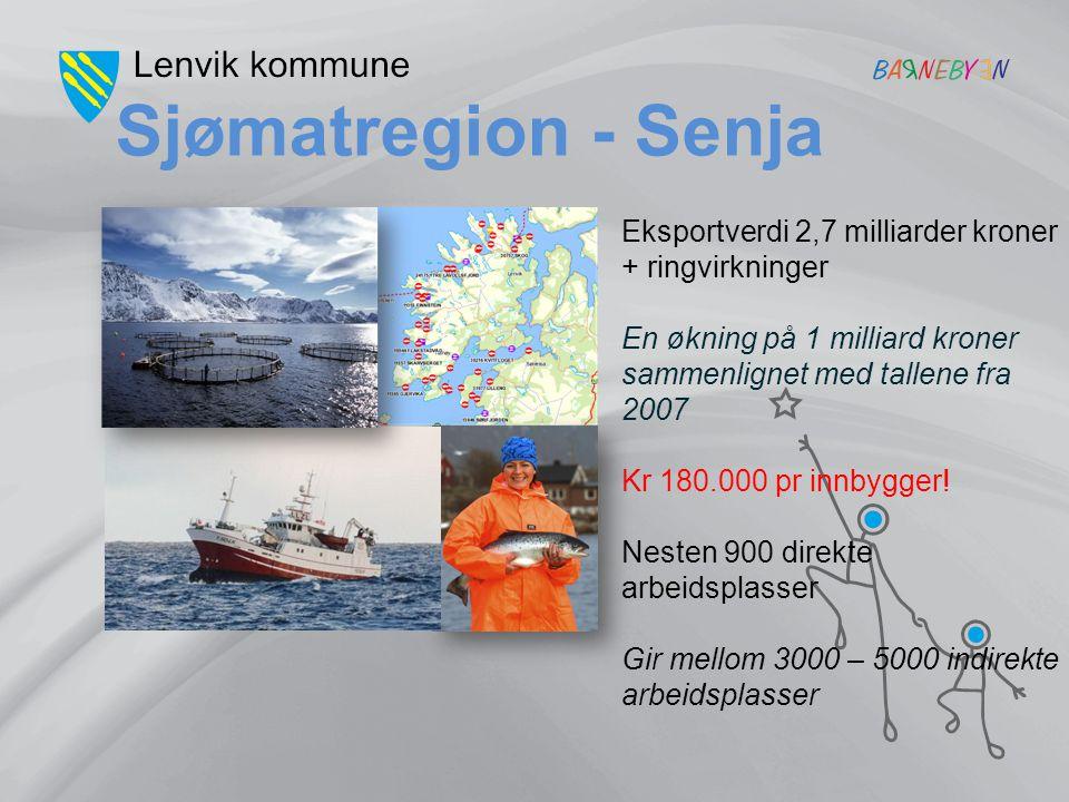 Sjømatregion - Senja Eksportverdi 2,7 milliarder kroner + ringvirkninger En økning på 1 milliard kroner sammenlignet med tallene fra 2007 Kr 180.000 p
