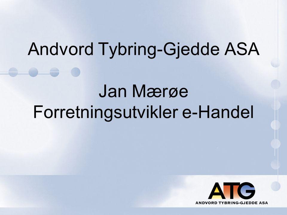 Innhold:  Presentasjon av Andvord Tybring-Gjedde ASA  e-Handel i et mer modent marked  Innkjøpsopplevelse - Hvordan kan mekanisk kundepleie dekke nesten alle tradisjonelle behov  Utfordringer i en nær fremtid