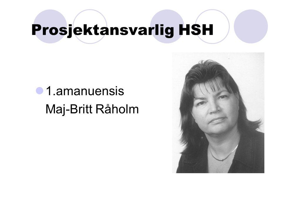 Prosjektansvarlig HSH 1.amanuensis Maj-Britt Råholm