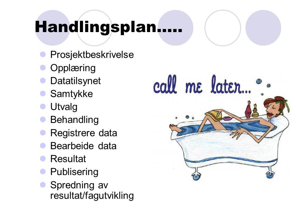 Handlingsplan.....