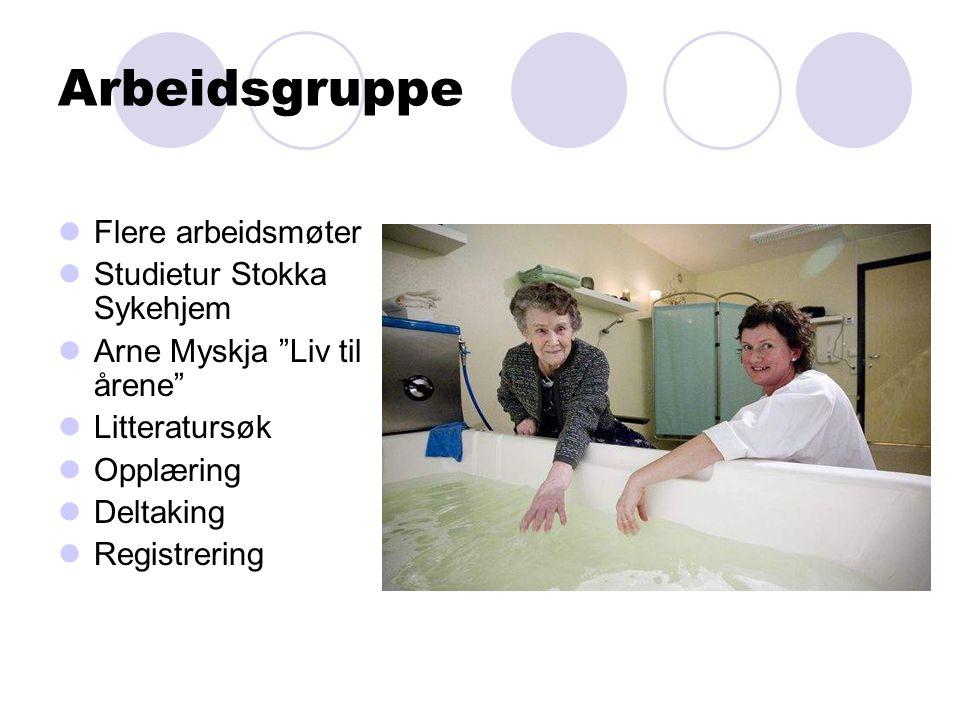 """Arbeidsgruppe Flere arbeidsmøter Studietur Stokka Sykehjem Arne Myskja """"Liv til årene"""" Litteratursøk Opplæring Deltaking Registrering"""