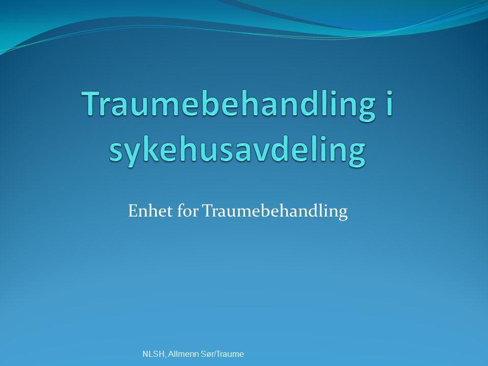 Enhet for Traumebehandling NLSH, Allmenn Sør/Traume