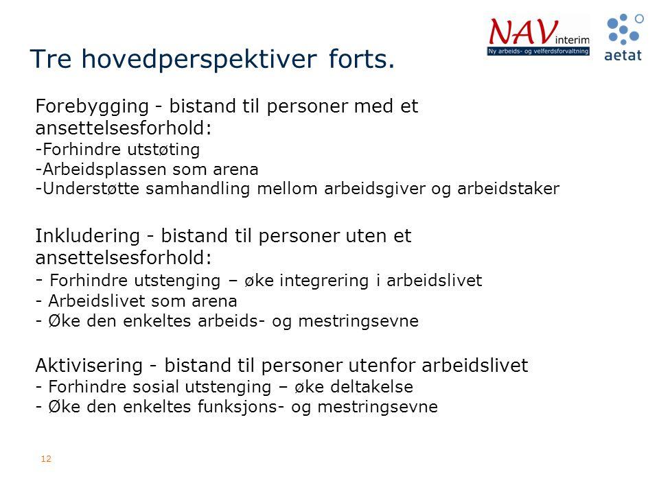 12 Tre hovedperspektiver forts. Forebygging - bistand til personer med et ansettelsesforhold: -Forhindre utstøting -Arbeidsplassen som arena -Understø