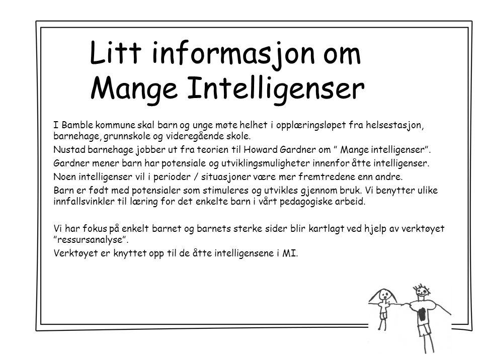 Litt informasjon om Mange Intelligenser I Bamble kommune skal barn og unge møte helhet i opplæringsløpet fra helsestasjon, barnehage, grunnskole og videregående skole.