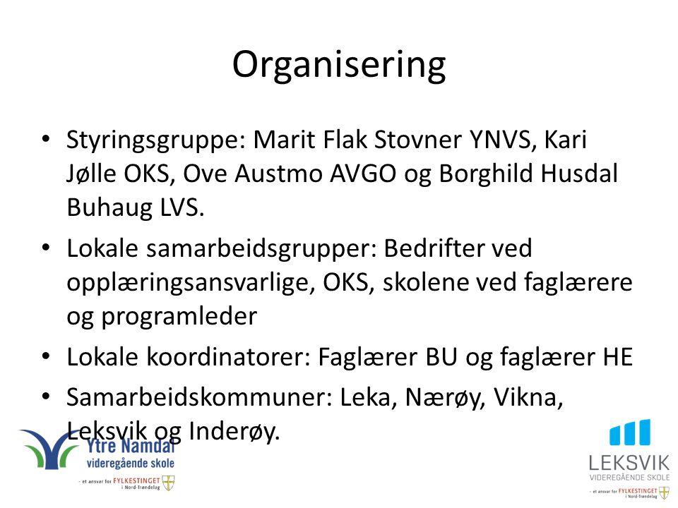 Organisering Styringsgruppe: Marit Flak Stovner YNVS, Kari Jølle OKS, Ove Austmo AVGO og Borghild Husdal Buhaug LVS. Lokale samarbeidsgrupper: Bedrift