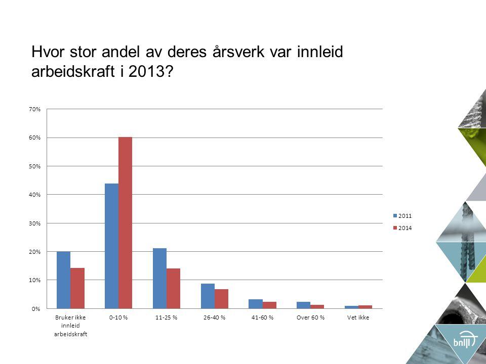 Hvor stor andel av deres årsverk var innleid arbeidskraft i 2013