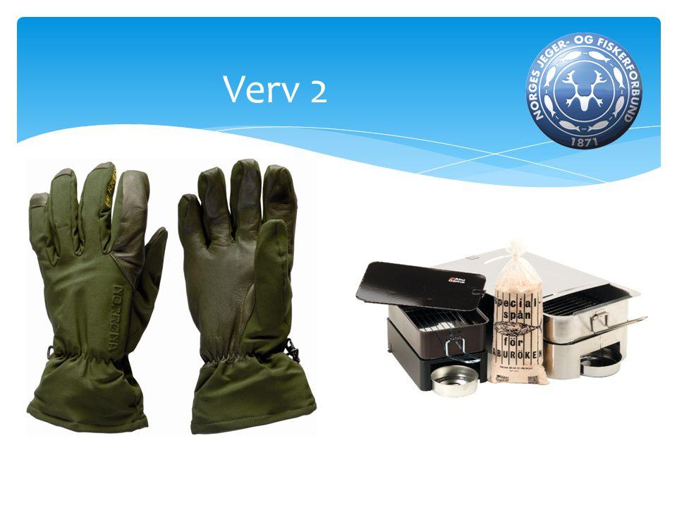 Verv 4