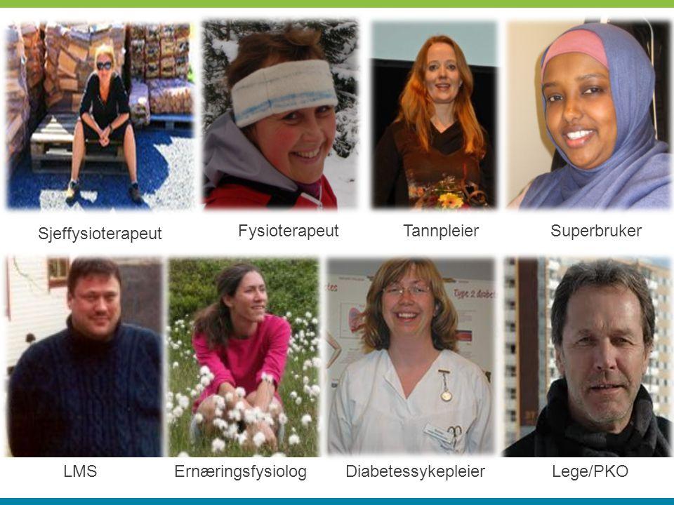 Sjeffysioterapeut FysioterapeutTannpleierSuperbruker LMSErnæringsfysiologDiabetessykepleierLege/PKO