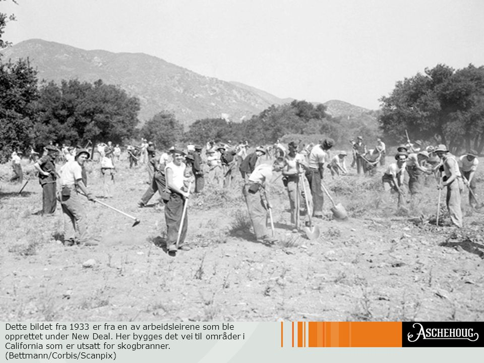 Dette bildet fra 1933 er fra en av arbeidsleirene som ble opprettet under New Deal. Her bygges det vei til områder i California som er utsatt for skog
