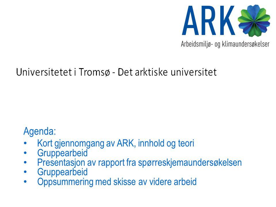 Agenda: Kort gjennomgang av ARK, innhold og teori Gruppearbeid Presentasjon av rapport fra spørreskjemaundersøkelsen Gruppearbeid Oppsummering med ski