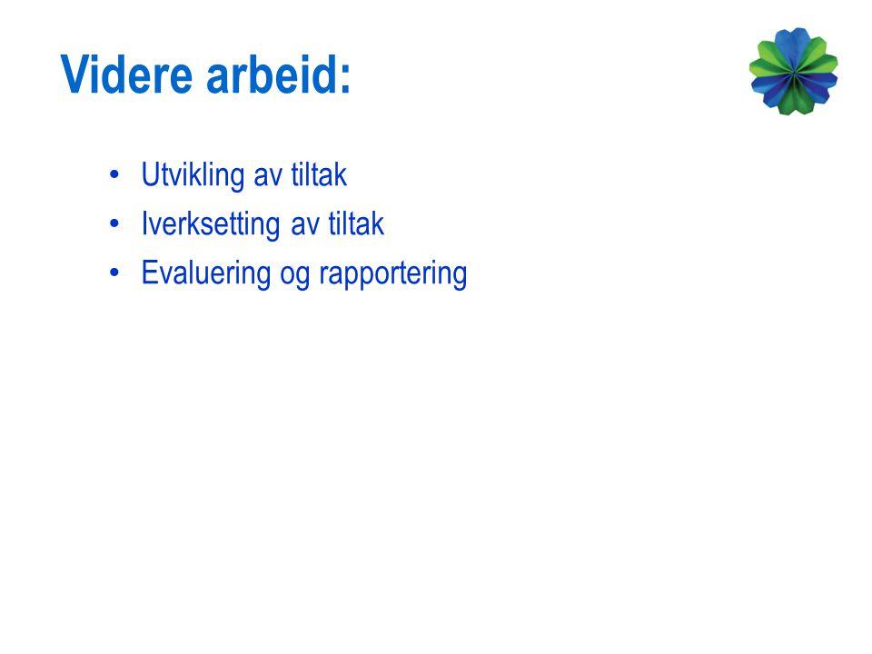 Utvikling av tiltak Iverksetting av tiltak Evaluering og rapportering Videre arbeid: