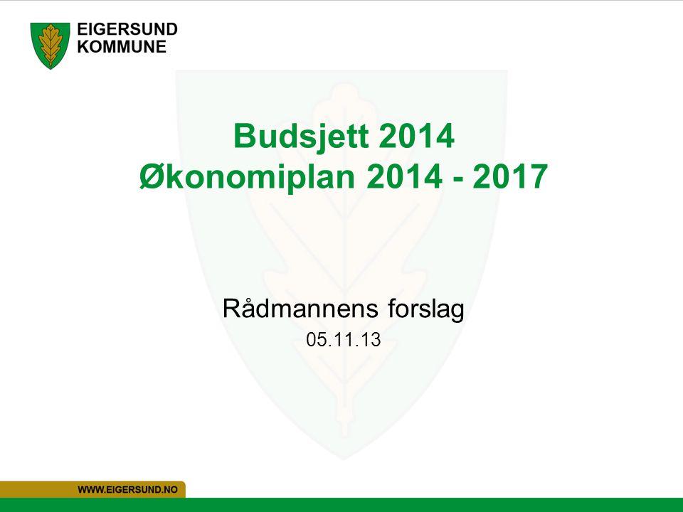 Budsjett 2014 Økonomiplan 2014 - 2017 Rådmannens forslag 05.11.13