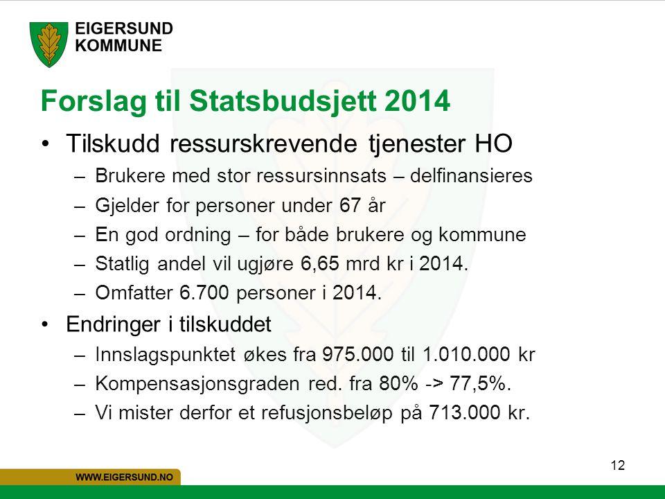 12 Forslag til Statsbudsjett 2014 Tilskudd ressurskrevende tjenester HO –Brukere med stor ressursinnsats – delfinansieres –Gjelder for personer under