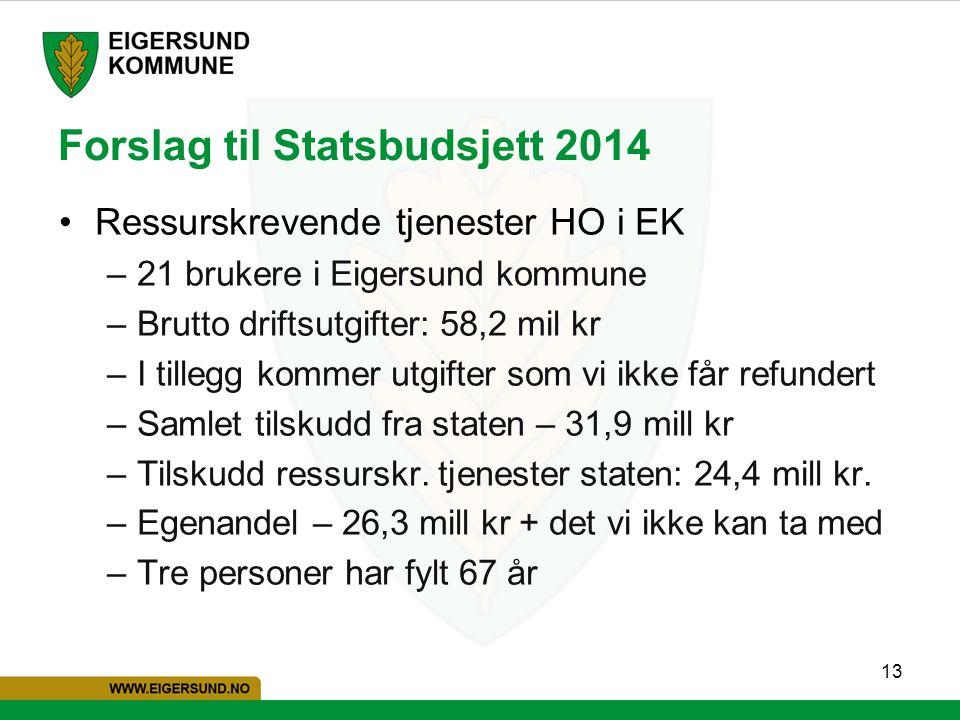 13 Forslag til Statsbudsjett 2014 Ressurskrevende tjenester HO i EK –21 brukere i Eigersund kommune –Brutto driftsutgifter: 58,2 mil kr –I tillegg kom