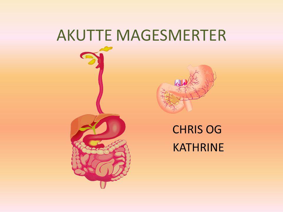 AKUTTE MAGESMERTER CHRIS OG KATHRINE