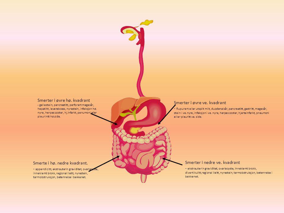 Smerter i øvre hø. kvadrant - gallestein, pancreatitt, perforert magesår, hepatitt, leverabcess, nyrestein, infeksjon hø. nyre, herpes zoster, hj.infa