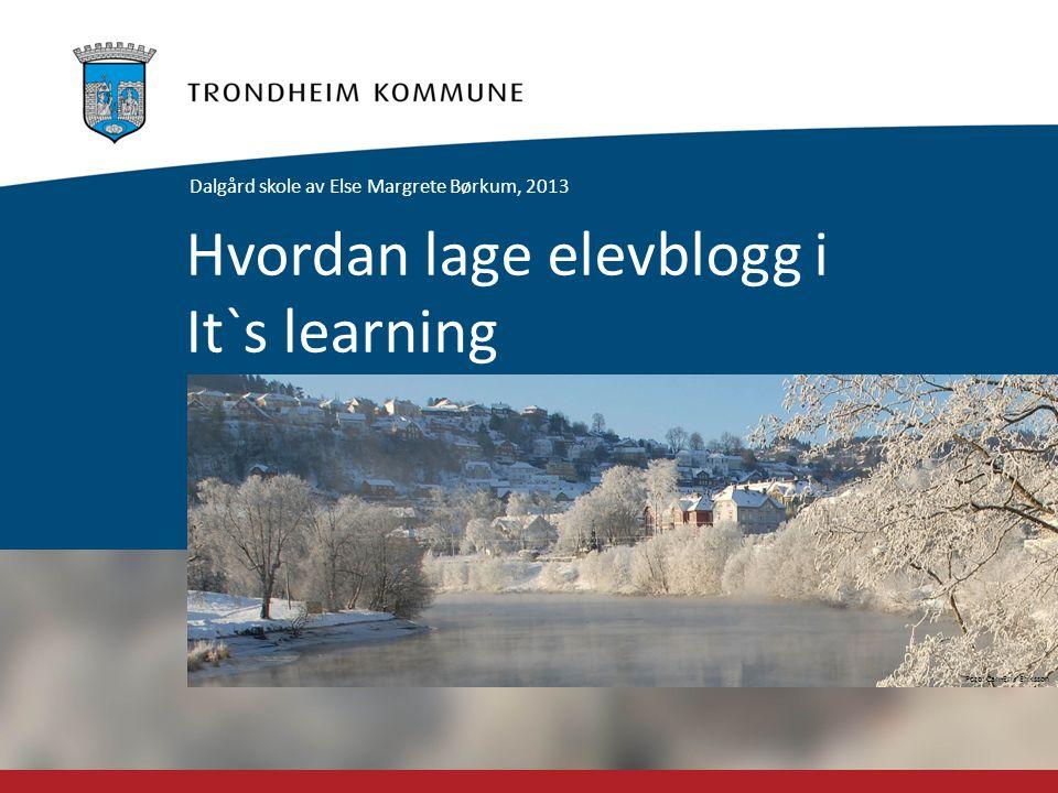 Foto: Carl-Erik Eriksson Hvordan lage elevblogg i It`s learning Dalgård skole av Else Margrete Børkum, 2013