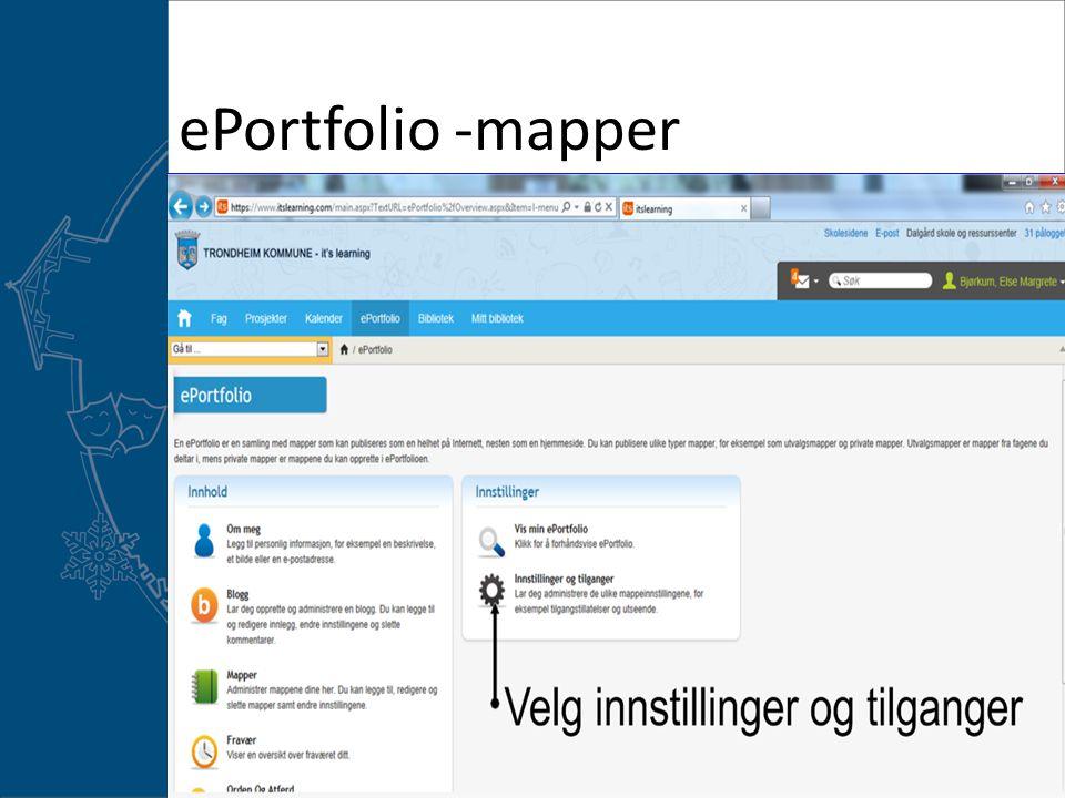 ePortfolio -mapper