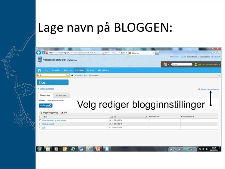 Lag navn til bloggen din og huk av for fag og prosjekter og lagre