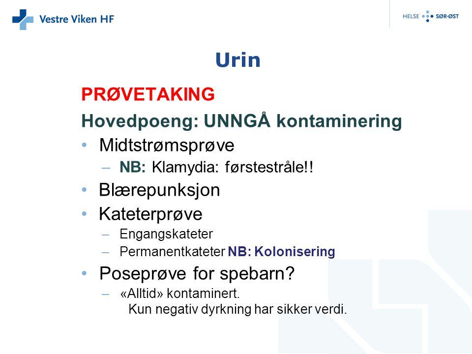 Urin PRØVETAKING Hovedpoeng: UNNGÅ kontaminering Midtstrømsprøve –NB: Klamydia: førstestråle!! Blærepunksjon Kateterprøve –Engangskateter –Permanentka