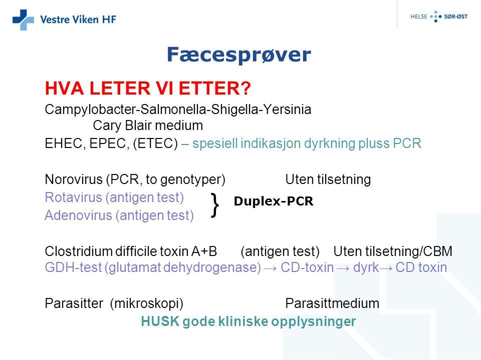 HVA LETER VI ETTER? Campylobacter-Salmonella-Shigella-Yersinia Cary Blair medium EHEC, EPEC, (ETEC) – spesiell indikasjon dyrkning pluss PCR Norovirus