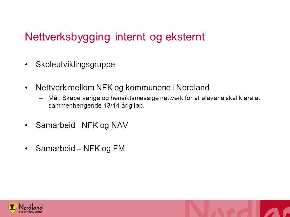 Nettverksbygging internt og eksternt Skoleutviklingsgruppe Nettverk mellom NFK og kommunene i Nordland –Mål: Skape varige og hensiktsmessige nettverk