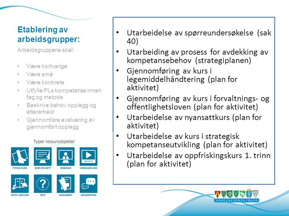 Etablering av arbeidsgrupper: Utarbeidelse av spørreundersøkelse (sak 40) Utarbeiding av prosess for avdekking av kompetansebehov (strategiplanen) Gjennomføring av kurs i legemiddelhåndtering (plan for aktivitet) Gjennomføring av kurs i forvaltnings- og offentlighetsloven (plan for aktivitet) Utarbeidelse av nyansattkurs (plan for aktivitet) Utarbeidelse av kurs i strategisk kompetanseutvikling (plan for aktivitet) Utarbeidelse av oppfriskingskurs 1.